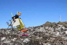 Ski Cart